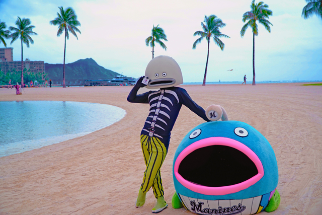 謎の魚 in HAWAII